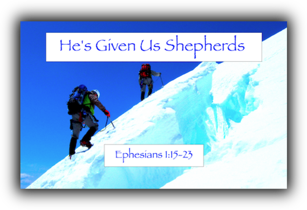 He's Given Us Shepherds